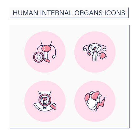 Human internal organs color icons set