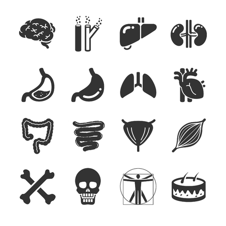 Stock Vector Illustration: Human organ icon set - Illustration