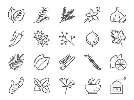 Spices and herbs icon set. Included icons as basil, thyme, ginger, pepper, parsley, mint and more.  イラスト・ベクター素材
