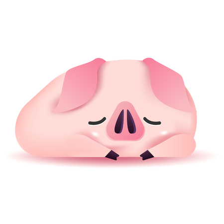 Cute pig character sleeping. 2019 Chinese New Year.