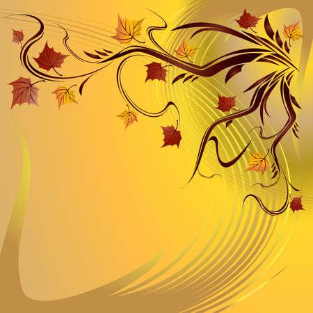 hojas de maple: Hermoso oto�o hojas de arce