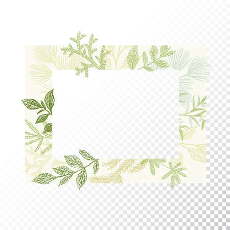 translucent: Rectangular floral frame ornament vector. Green branches and leaves border. Transparent background Illustration