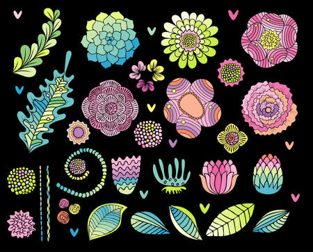 Flower hand drawn set, succulent, rose, leaf isolated on black background. Floral elements collection for card design Stockfoto