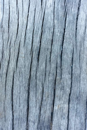 Wood texture material Stock Photo