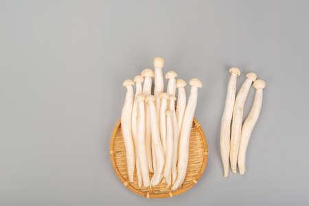 White beech mushroom on gray background 免版税图像
