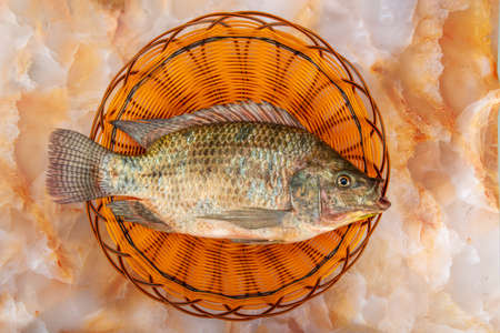 A tilapia in the basket