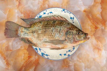 A tilapia on a plate
