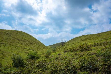 Scenery of Alpine Grassland in Guangdong Yangchun Chicken Cage 免版税图像