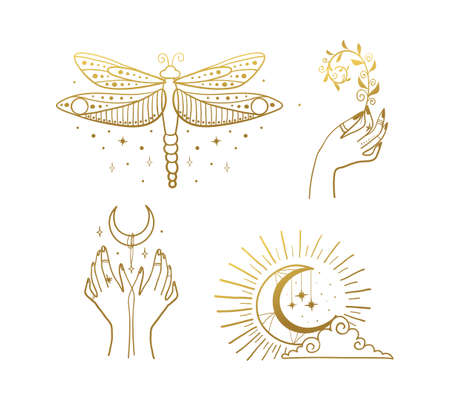 Set of beautiful golden mystical elements in boho style, dragonfly, crescent, female hands. Elements for design of tarot, tattoo, sticker. Magical and astrological objects. Linear vector illustration isolated on white background