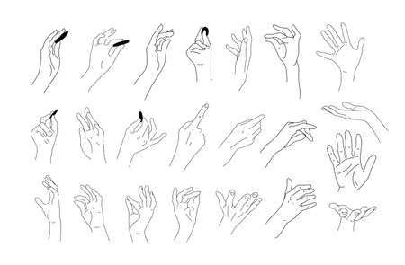 Big set of realistic hand sketches. Linear drawings of hands, fingers and palms. Elements for design. Hands hold, give, touch. Vector doodle illustration Illustration