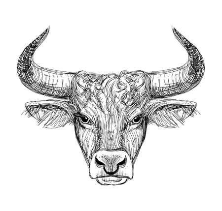 Happy New Year 2021 of the Ox, Ox-Taurus. Linear drawing on a black background, tarot, tattoo, chinese horoscope, astrology and zodiac signs. Vector illustration for poster, cover, calendar