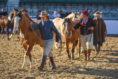Buenos Aires, Argentina - Jul 16, 2016: Group of gauchos lead their horses during a show at the Rural Exhibition. Banco de Imagens - 71117817