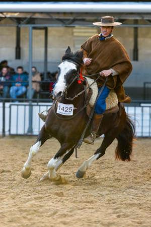 Buenos Aires, Argentina - Jul 16, 2016: A gaucho cowboy riding a horse during a show at the Rural Exhibition.