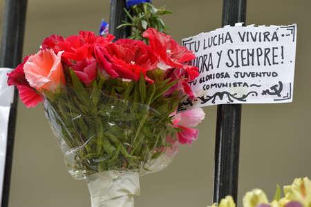 花は、ブエノスアイレス、アルゼンチンのキューバ大使館で塀上の標識。