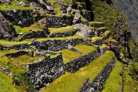 マチュピチュは、ペルーのクスコの近くのテラス。マチュ ・ ピチュは、ペルーの歴史的な聖域です。