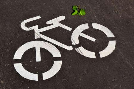 アスファルト道路の白い自転車道路標識。