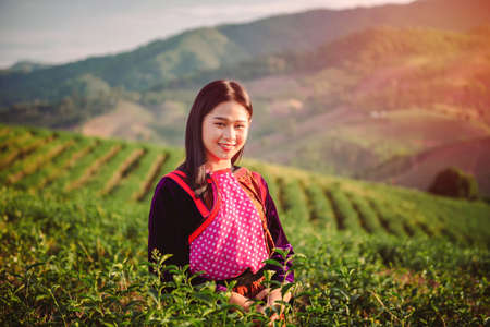 women and friend in tea farm chiang rai thailand asia