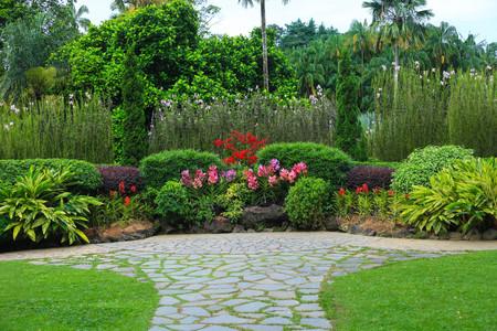 Singapore, Singapore - June 05, 2017 : Green nature Singapore Botanic Garden in Singapore Stock Photo