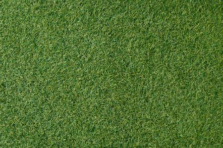 Artificial grass Stock Photo - 12050687