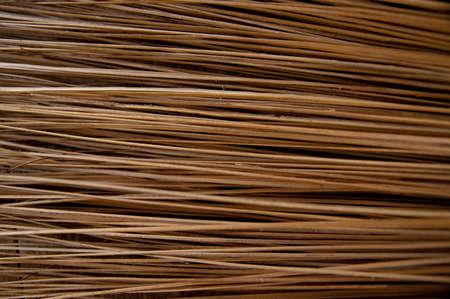 Coconut broom photo