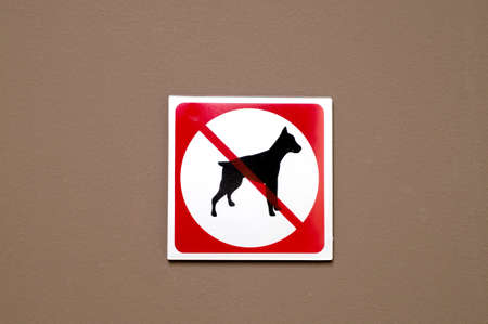 No dogs allowed sign on concrete wall photo