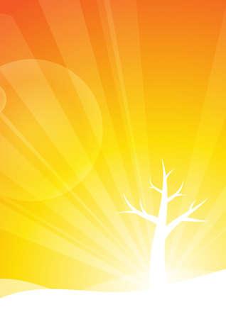 leafless: Leafless tree on orange background