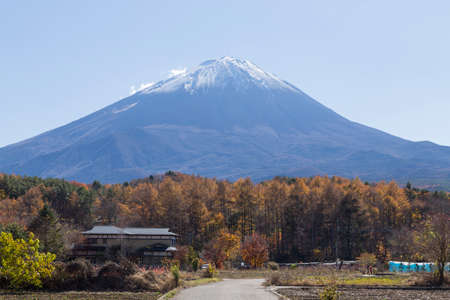saiko: This photo was shot from the area around Mt.Fuji in Autumn. It is time to start snow cap on the top of Mt.Fuji. There are 5 lake around Mt.Fuji. Stock Photo