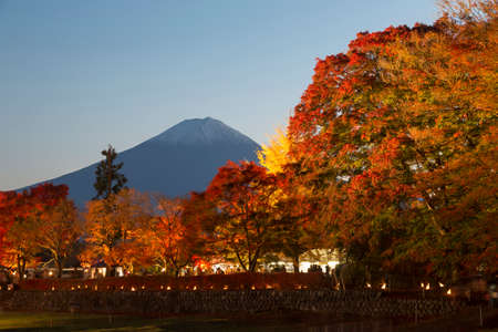 momiji: This photo was shot from the area around Mt.Fuji. The Momiji or Maple will light up at night. This is called maple corridor or maple tennel at Nashigawa river, Japan.