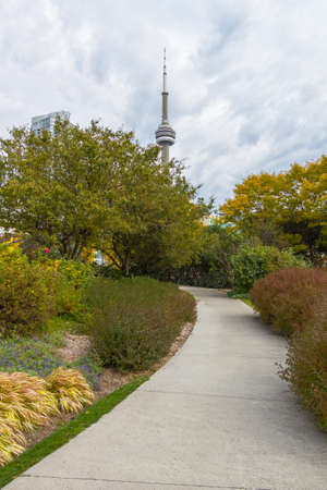 This photo was shot from snake island which is opposite to Toronto city. The leaves of trees change color. Editorial