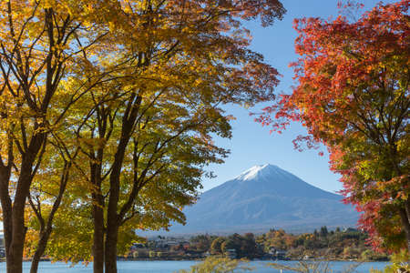 saiko: This photo was shot from the area around Mt.Fuji in Autumn. It is time to start snow cap on the top of Mt.Fuji and maple leaves change to autumn color. There are 5 lakes around Mt.Fuji.
