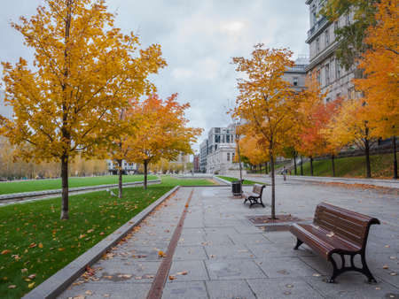 montreal city: This photo was shot from Montreal city in autumn