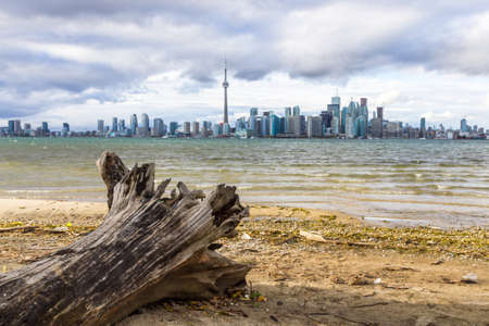 niagara falls city: This photo was shot from snake island which is opposite to Toronto city. The leaves of trees change color. Editorial