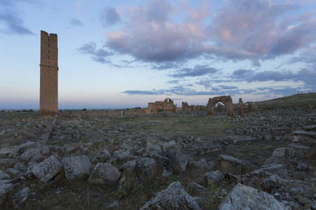 Harran, This photo was shot from Harran city in Turykey. The ruin of first university in Turkey.