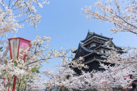 Matsue Castle is een van de slechts een dozijn originele kastelen in Japan, wat betekent dat de hoofdtoren tot op de dag van vandaag heeft overleefd door branden, aardbevingen en de anti-feodale sloop van de Meiji-periode. Het wordt soms de