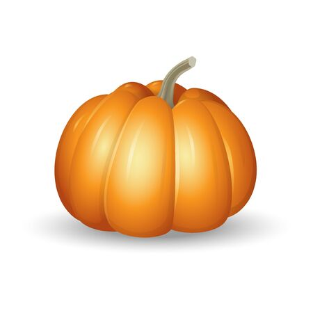 Orange pumpkin - cartoon vector illustration isolated on white background Ilustrace