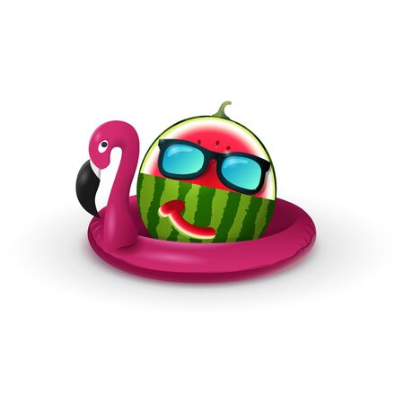 Flamingo float with carve watermelon and sunglasses isolatd on white background Ilustrace