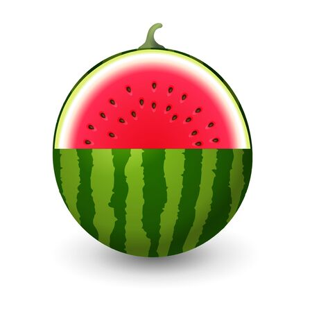 Watermelon sliced vector illustration isolated on white background