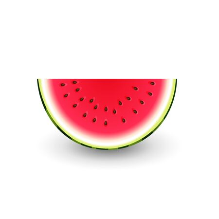 Watermelon half slice - vector illustration isolated on white background Ilustrace