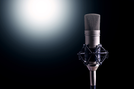 microphone condenser for recording vocals and musical instrument in the studio