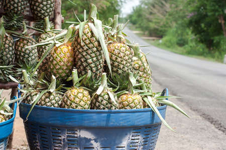 Pineapple in basket photo