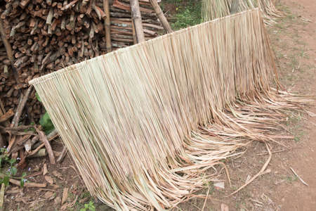 thatch-roof