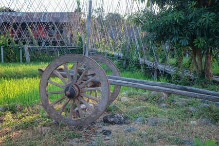 Wagenrad aus Holz mit Metallfelge in einem Feld in der Provinz Nan, Thailand?