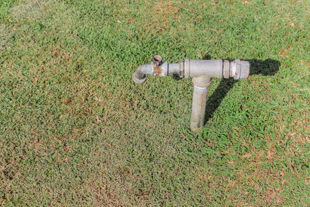 uncluttered: Faucet old lawn green are signs of dehydration in the heat.