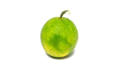 cantle: Citrus fruits, green, white and orange balls, one ball was good colors are beautiful.