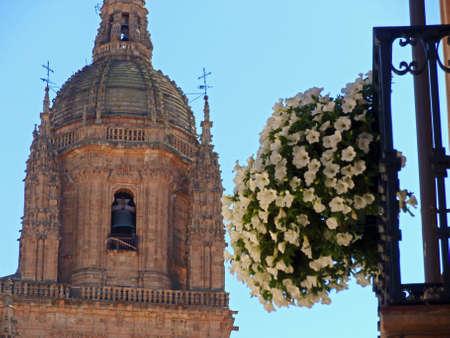 salamanca: Famous Salamanca cathedral, Spain Stock Photo