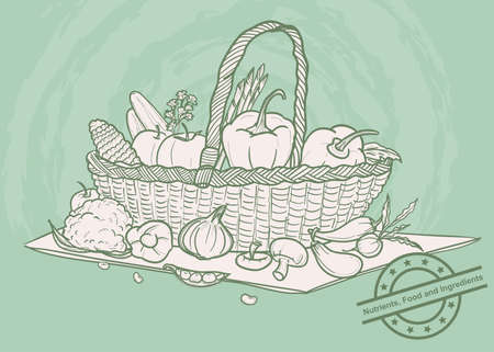 The doodle vegetables set in basket, vector vegan ingredient, healthy food, doodle style Çizim