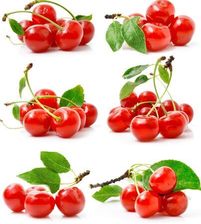 Cherry sprig leaf fruit white background Zdjęcie Seryjne