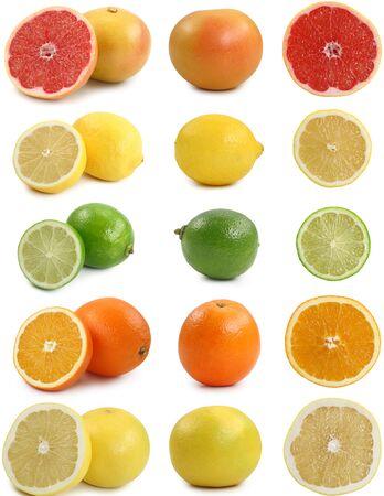 Citrus fruit orange lemon lime grapefruit on a white background