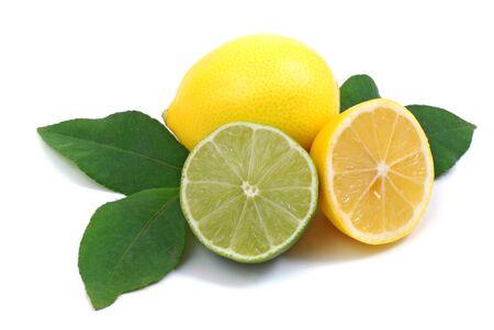 Lemon lime leaves citrus on a white background Фото со стока - 130139461