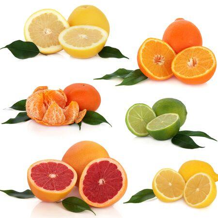 Citrusvruchten sinaasappel citroen mandarijn limoen grapefruit bladeren op een witte achtergrond Stockfoto